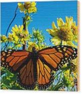 The Wonderful Monarch 3 Wood Print