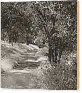 The Wooded Path Wood Print