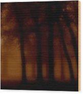 The Woodlands Wood Print