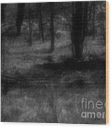 The Woods Are Lovely Dark And Deep Wood Print