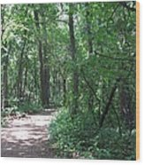 Stopping By Woods Wood Print