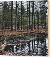 The Woods Reflected Wood Print