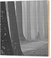 The Woods Wood Print