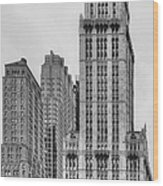 The Woolworth Downtown Wood Print