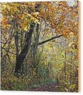 The Y Tree Wood Print