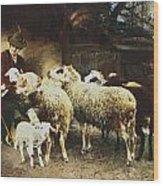 The Young Shepherd Wood Print