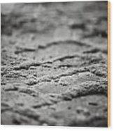 The Zen Path Bw Wood Print