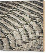 Theatre At Epidaurus Wood Print by Gabriela Insuratelu