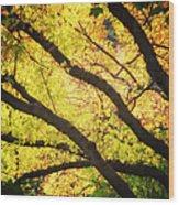 Then Autumn Arrives 03 Wood Print