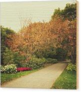 Then Autumn Arrives 05 Wood Print