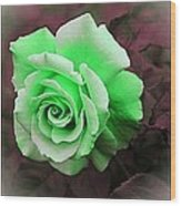 There Were Roses Triptych Wood Print