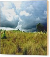 There's A Storm Brewing!!! #golf Wood Print