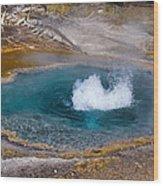 Thermal Pool Wood Print