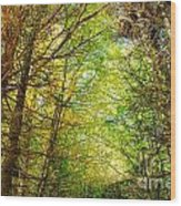 Thick Forest Hdr Wood Print