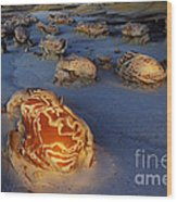 The Egg Factory  Bisti/de-na-zin Wilderness At Night Wood Print