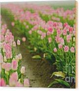 Think Pink Wood Print by Nick  Boren