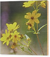 Think Spring Wood Print