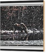 Thirsty Moose Impressionistic Painting With Borders Wood Print