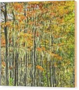 This Is What Autumn Brings Wood Print