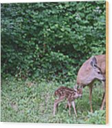 This Standing Up Is Hard Mom Wood Print