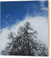 #thisparticulartree Wood Print