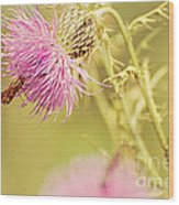 Thistle And Friend Wood Print