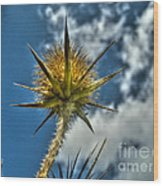 Thistle And Sky Wood Print