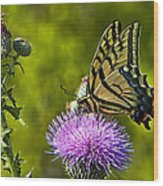 Thistle Do Just Fine Wood Print
