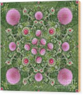 Thistle Star Mandala Wood Print