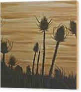 Thistles At Sunset Wood Print