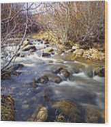 Thomas Creek Wood Print