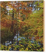 Thoreau's Pride Wood Print