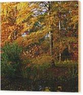 Thoreau's Splendour Wood Print