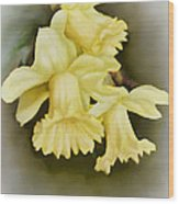 Those Blooming Daffadils Wood Print