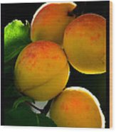 Those Glowing Golden Apricots Wood Print by Susanne Still