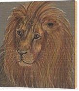 Thoughtful Lion 2 Wood Print