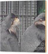 Thoughtful Monkeys Wood Print