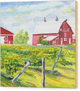 Thousand Islands Winery-september Wood Print