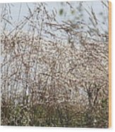 Thousands Of Shimmering Raindrops Wood Print