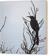 Thrasher Wood Print