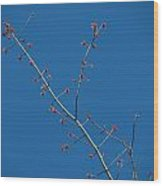 Threads And Buds Wood Print
