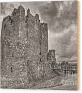Threave Castle In Grey Wood Print