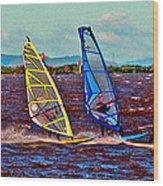 Three Amigo Windsurfers Wood Print by Joseph Coulombe