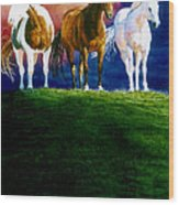 Three Amigos Wood Print by Hanne Lore Koehler