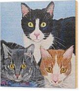 Three Amigos Wood Print