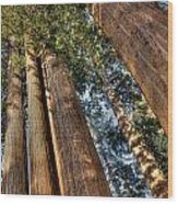 Three And One Wood Print