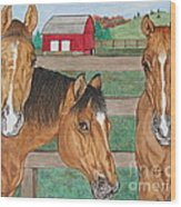 Three Beautiful Horses Wood Print