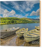Three Boats Wood Print by Adrian Evans