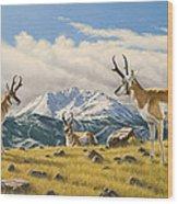 Three Bucks On The Ridge Wood Print