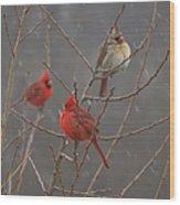 Three Cardinals Wood Print